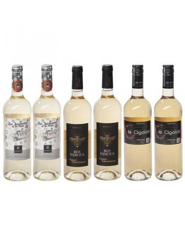 Wijnpakket Frans wit 6x75cl